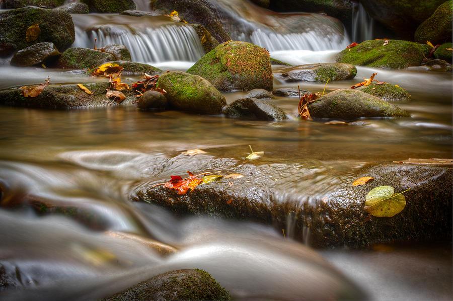 Roaring Photograph - Roaring Fork Stream Great Smoky Mountains by Steve Gadomski