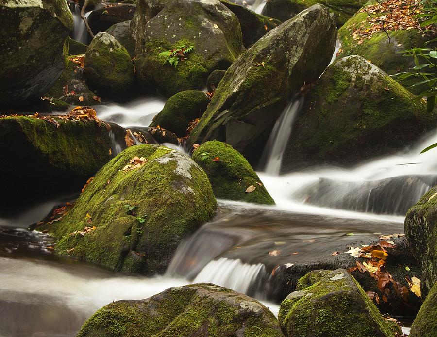 Smokies Photograph - Roaring Fork Waterfall by Andrew Soundarajan