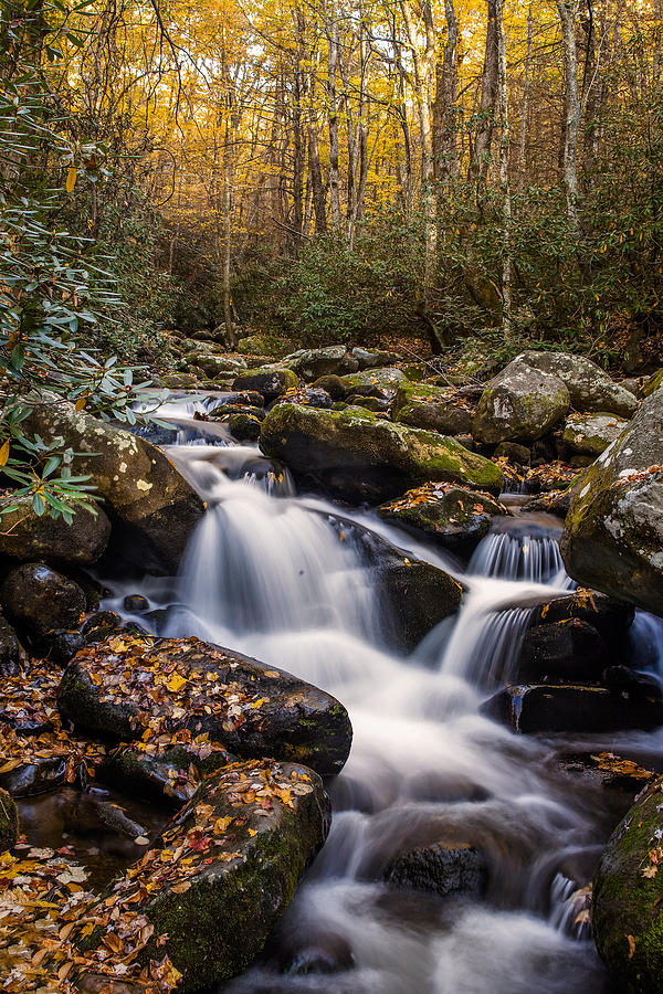 Waterfall Photograph - Roaring Fork Waterfall At Autumn by Andrew Soundarajan