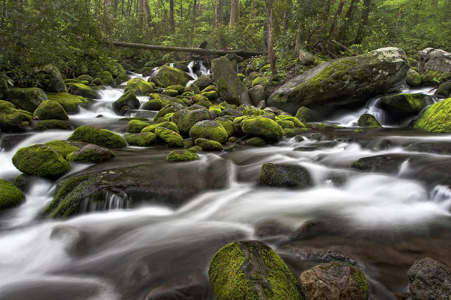 Roaring Forks River by Ken Barrett