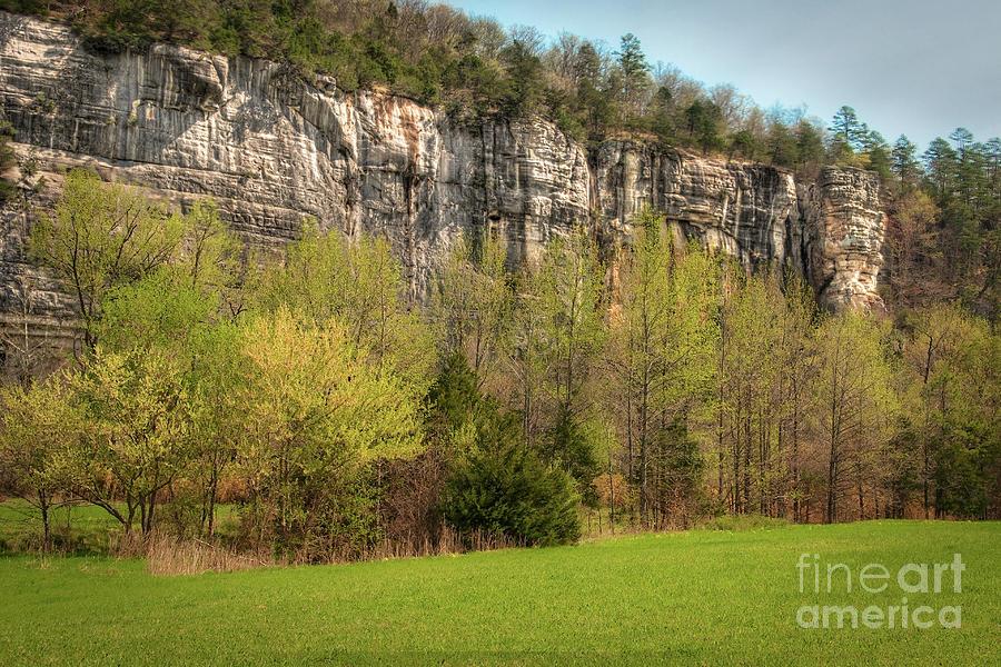 Bluff Photograph - Roark Bluff by Tamyra Ayles