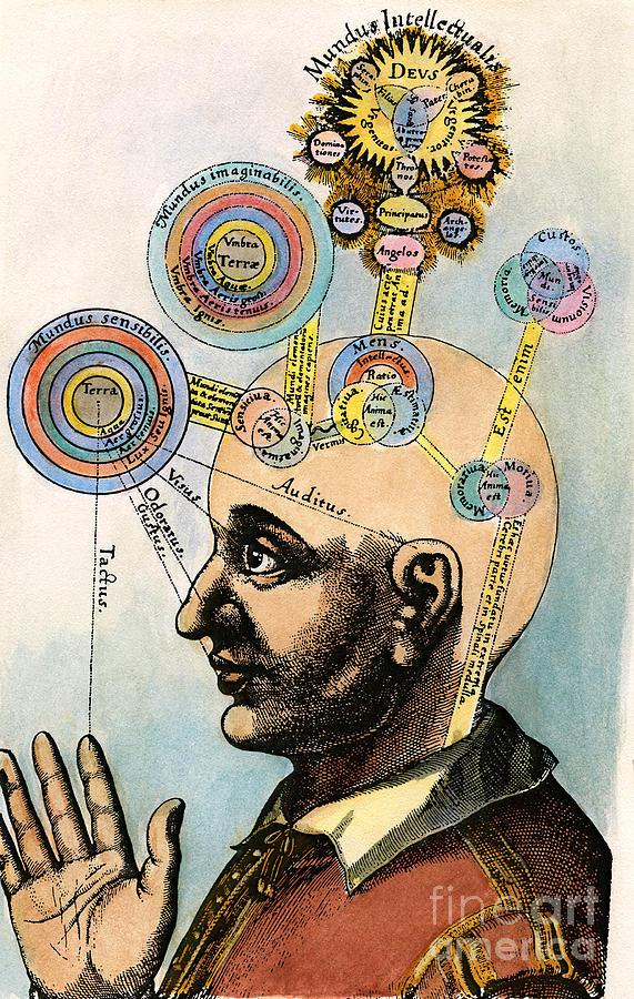 Brain Drawing - Robert Fludd, 1574-1637 by Granger