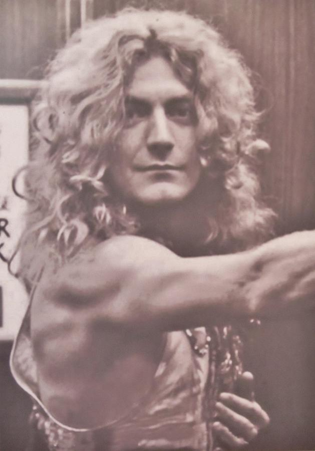 Jimmy Page Photograph - Robert Plant by Donna Wilson