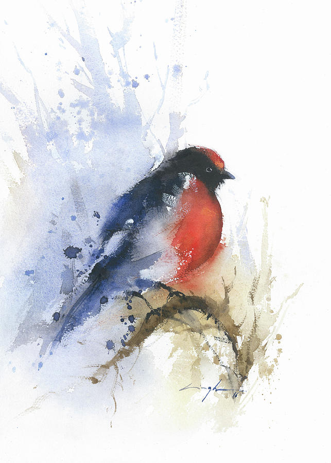 Robin Bird Watercolor Painting Print Red And Black Birds