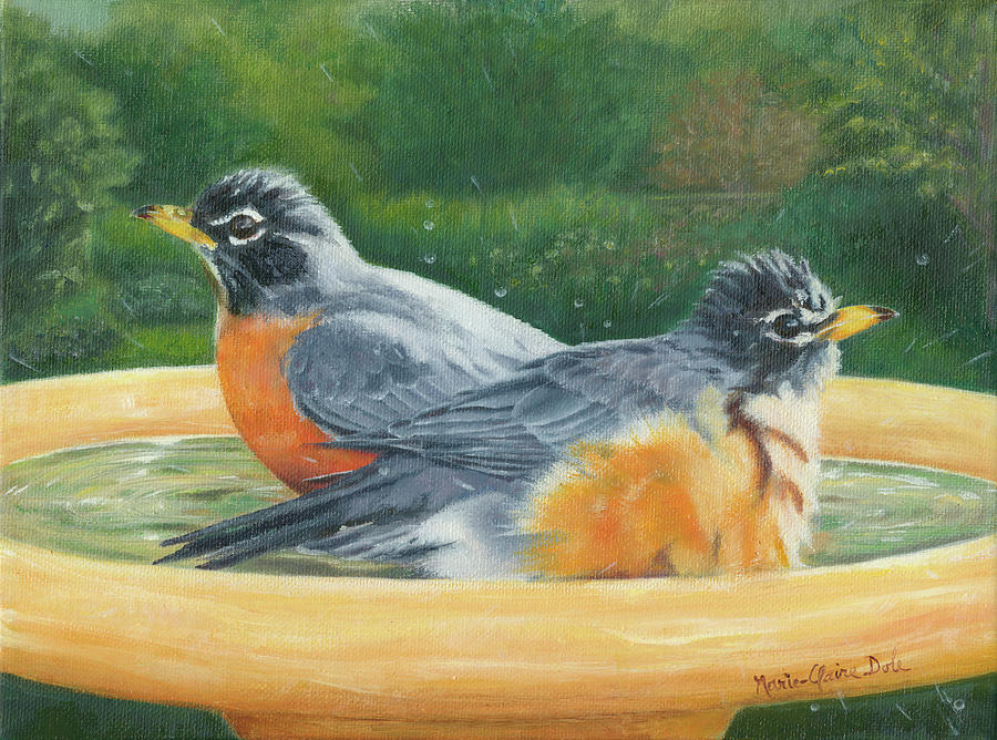 Robins Painting - Robins Bathing by Marie-Claire Dole