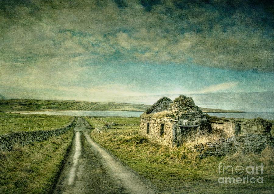 Ireland Photograph - Robinsons I by Marion Galt