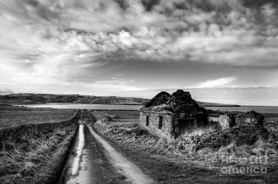 Ireland Photograph - Robinsons II by Marion Galt