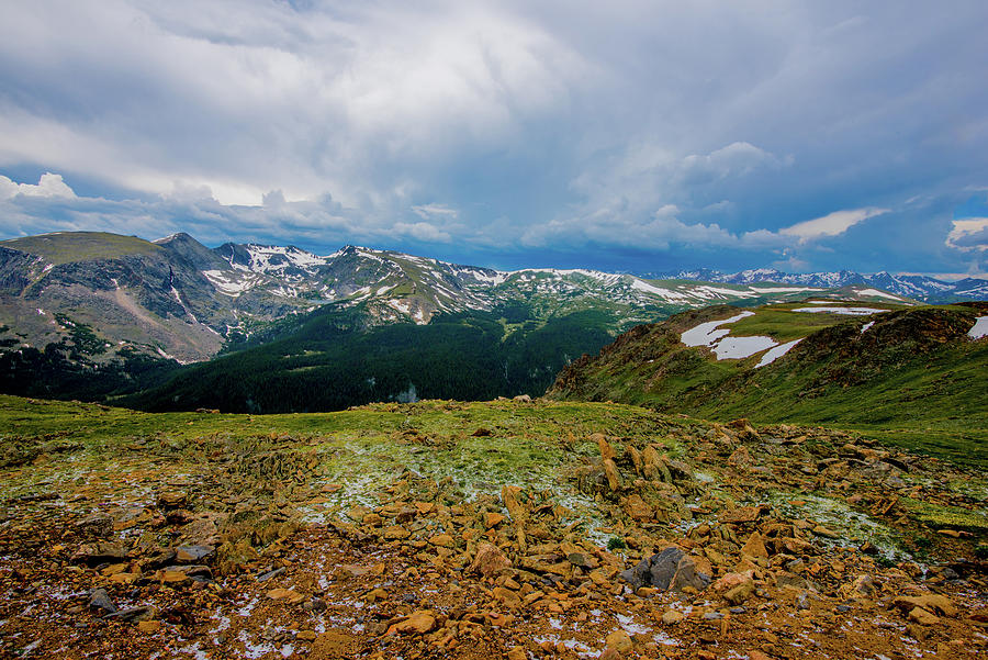 Rock Cut 2 - Trail Ridge Road by Tom Potter