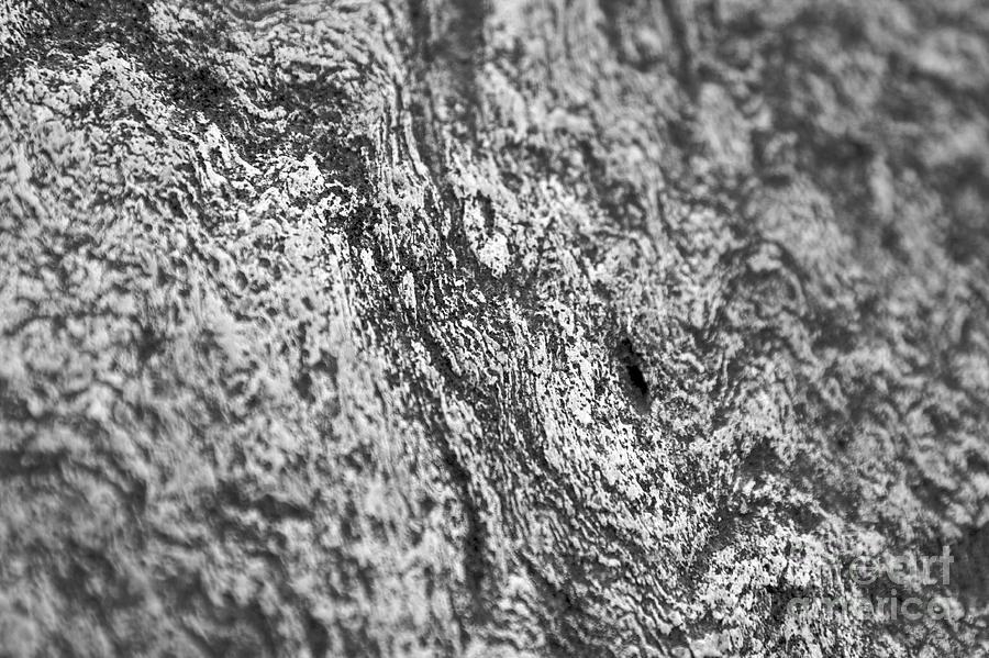 Rock Photograph - Rock Design 3 by Hideaki Sakurai