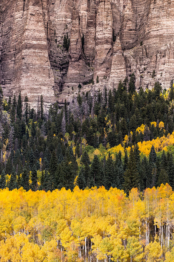 Colorado Photograph - Rock Ledge by Jonathan Steele