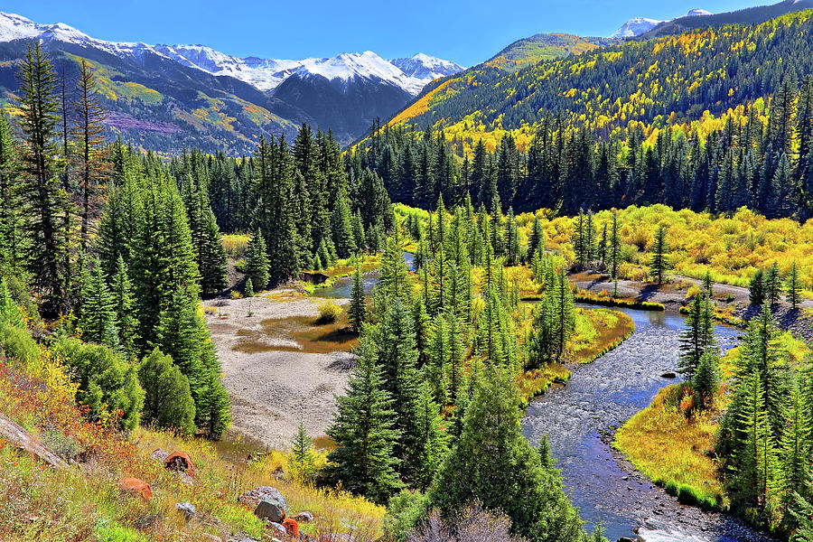 Colorado Photograph - Rockies And Aspens - Colorful Colorado - Telluride by Jason Politte