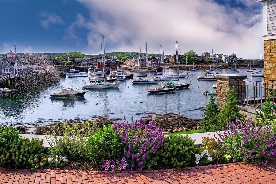 Rockport In Bloom Photograph