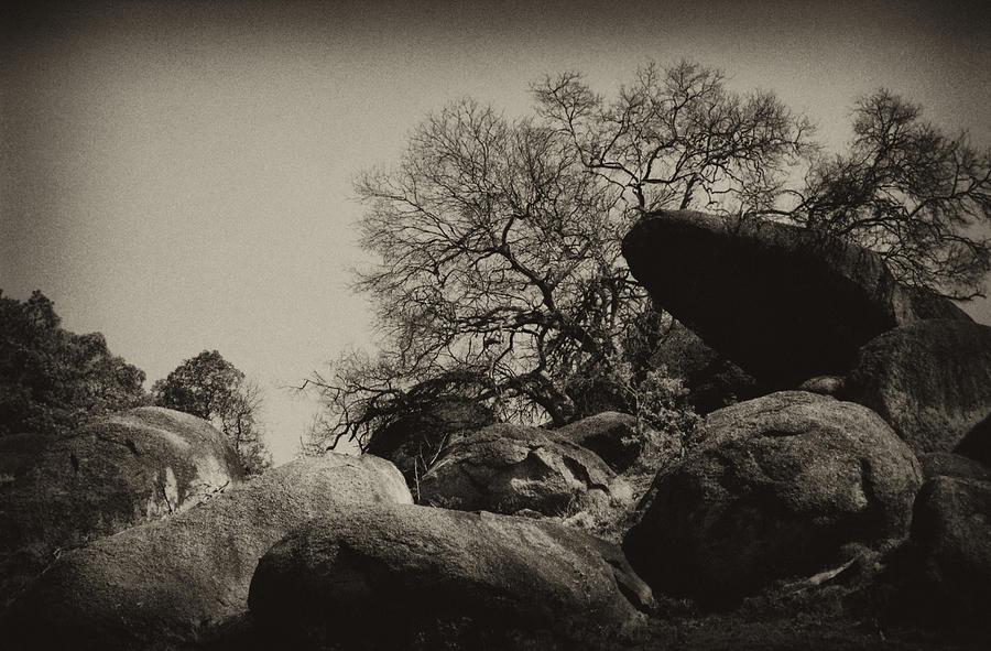 Rock Photograph - Rocks by Amarildo Correa