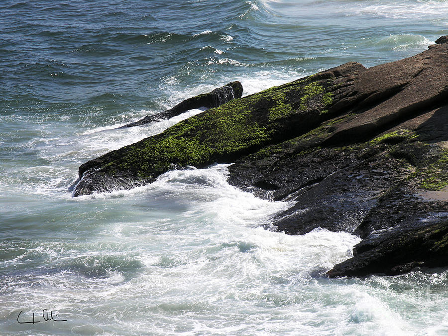 Wave Photograph - Rocks And Waves 03 by Carlos Alvim