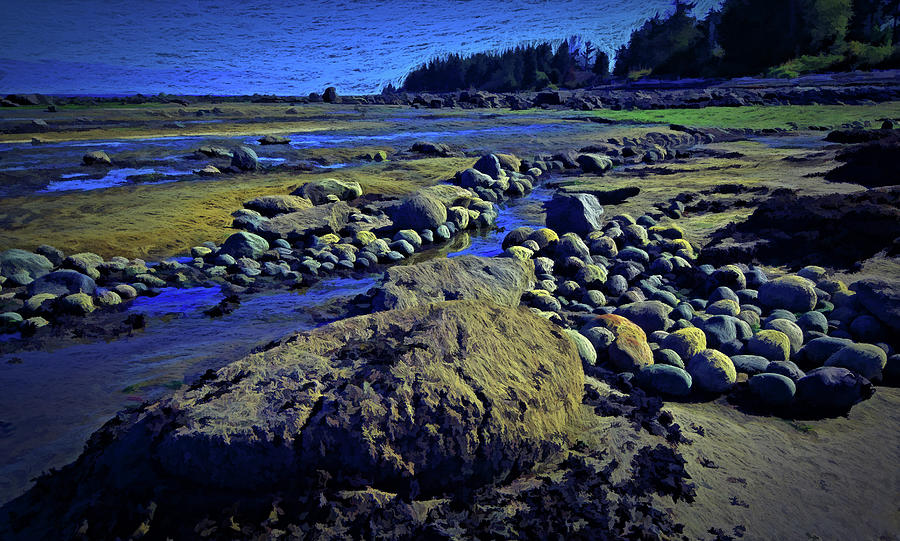 Rocks at Low Ebb by Richard Farrington