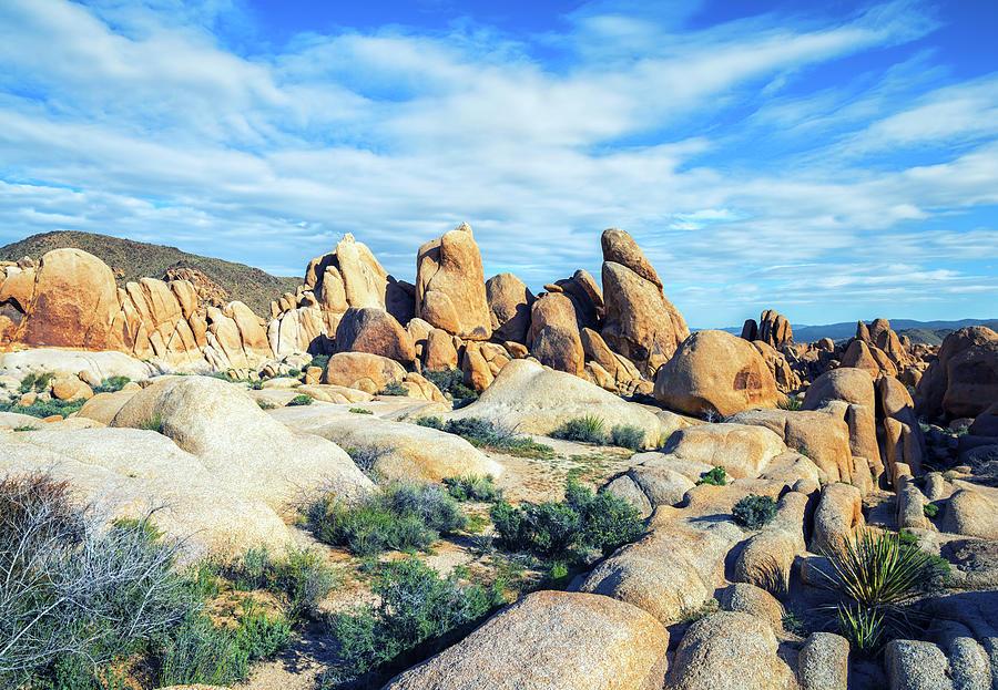 Joshua Tree Photograph - Rocks Upon Rocks by Joseph S Giacalone