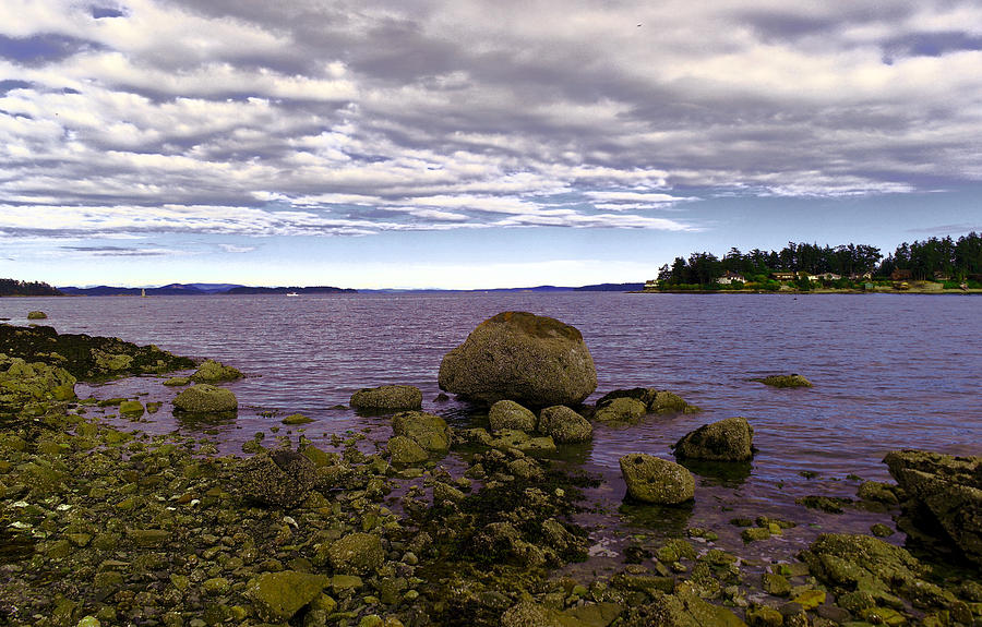 Cove Photograph - Rocky Cove In Sydney British Columbia by Jeff Swan