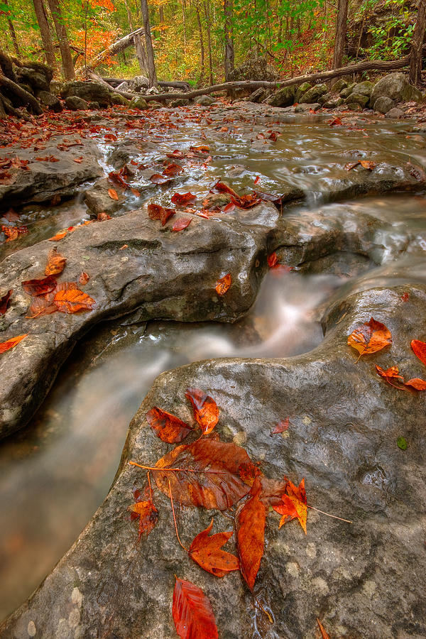 Landscape Photograph - Rocky Creek by Ryan Heffron