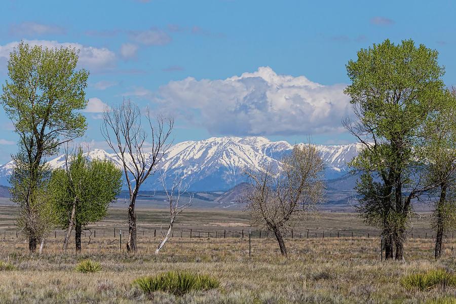 Rocky Mountain Landscape Photograph