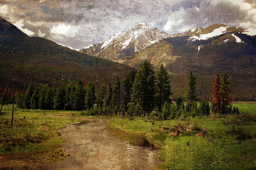 Rocky Mountain National Park Photograph by Scott Fracasso