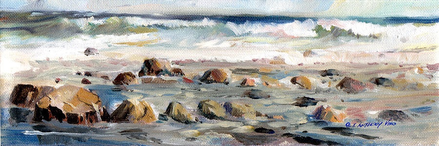 Rocky Seashore by P Anthony Visco