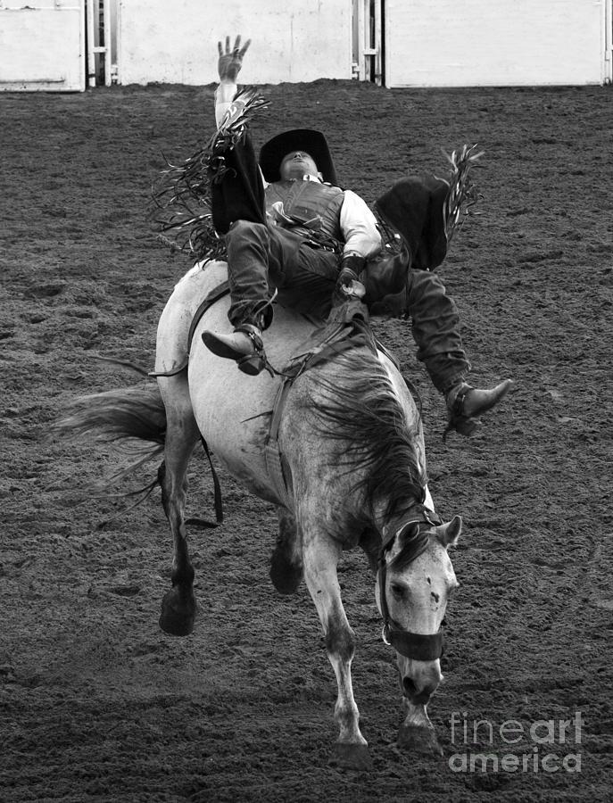 Bareback Riding Photograph - Rodeo Bareback Riding 13 by Bob Christopher