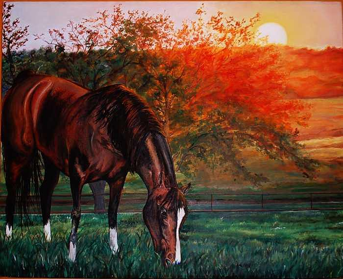 Horse Painting - Rodeo Entry by Kaley LaRose