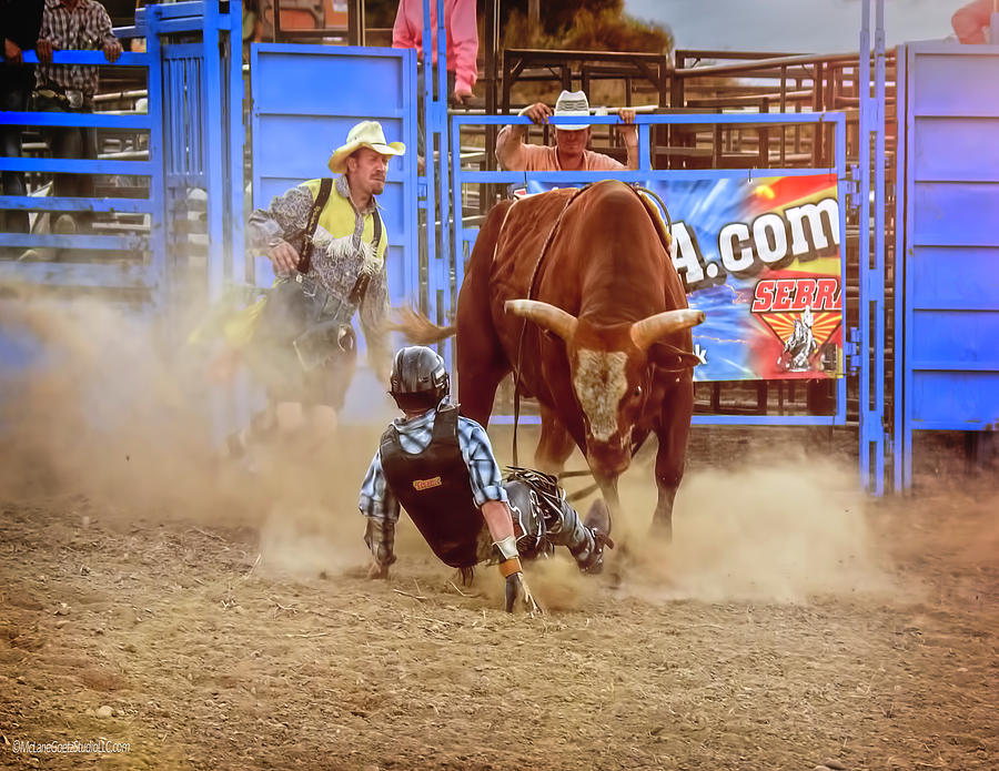 Sport Photograph - Rodeo Rider Down by LeeAnn McLaneGoetz McLaneGoetzStudioLLCcom