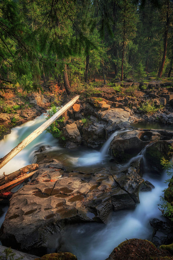 Water Photograph - Rogue River by Cat Connor