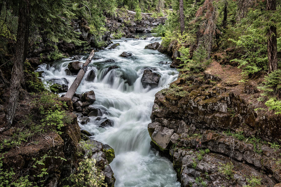 Rogue River Gorge by George Buxbaum
