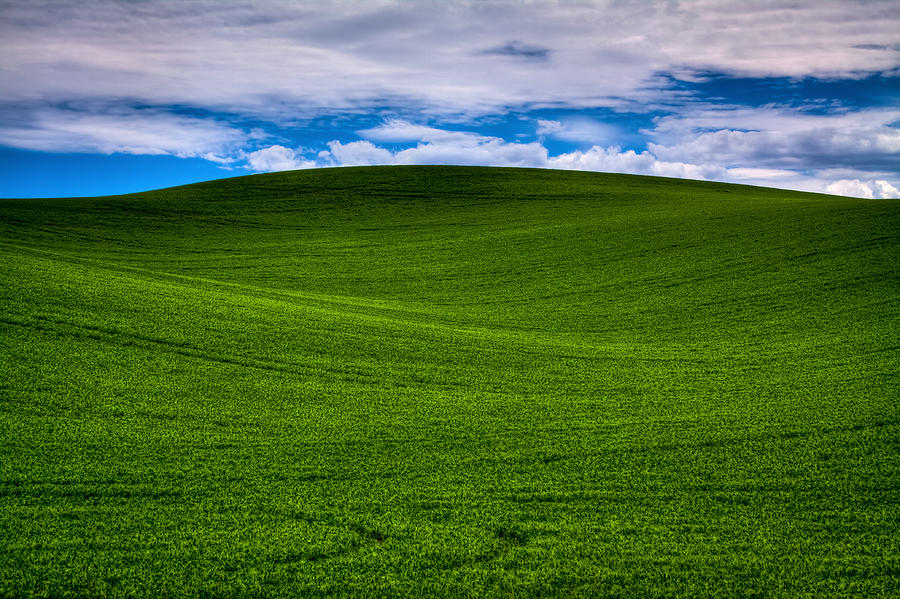 rolling hills of the palouse photograph by david patterson
