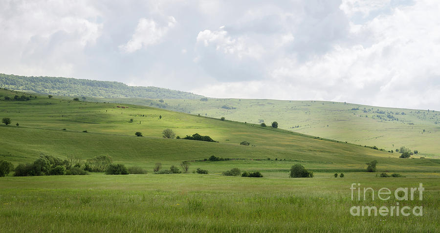 Rolling Landscape, Romania by Perry Rodriguez