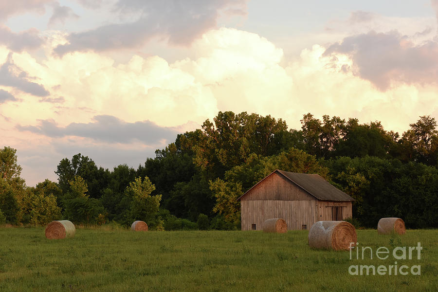 Rolls of Hay by Charles Owens