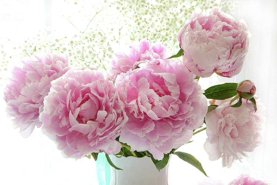 Romantic Dreamy Shabby Chic Cottage Pink Peonies Print Peony
