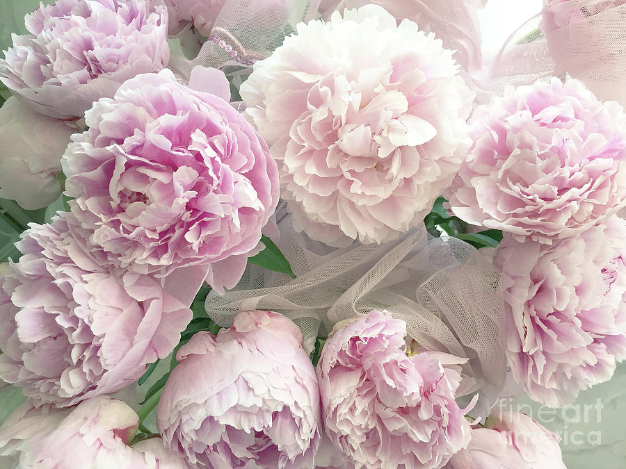 Romantic shabby chic pastel pink peonies bouquet romantic pink romantic shabby chic pastel pink peonies bouquet romantic pink peony flower prints photograph by kathy fornal mightylinksfo