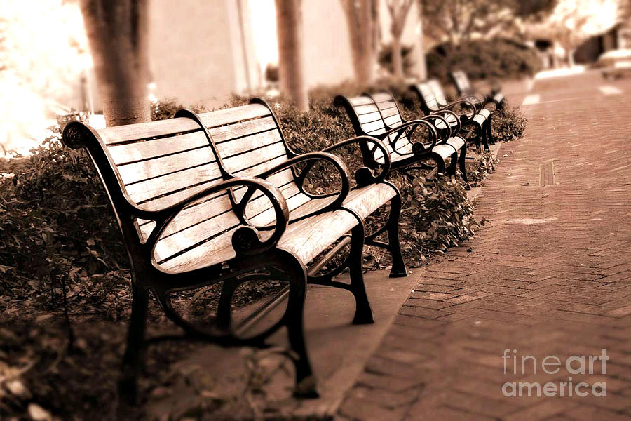 Paris Park Benches Photograph - Romantic Surreal Park Bench Pink Sepia Tones by Kathy Fornal