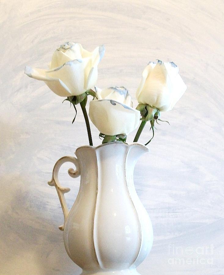 Photo Photograph - Romantic White Roses by Marsha Heiken