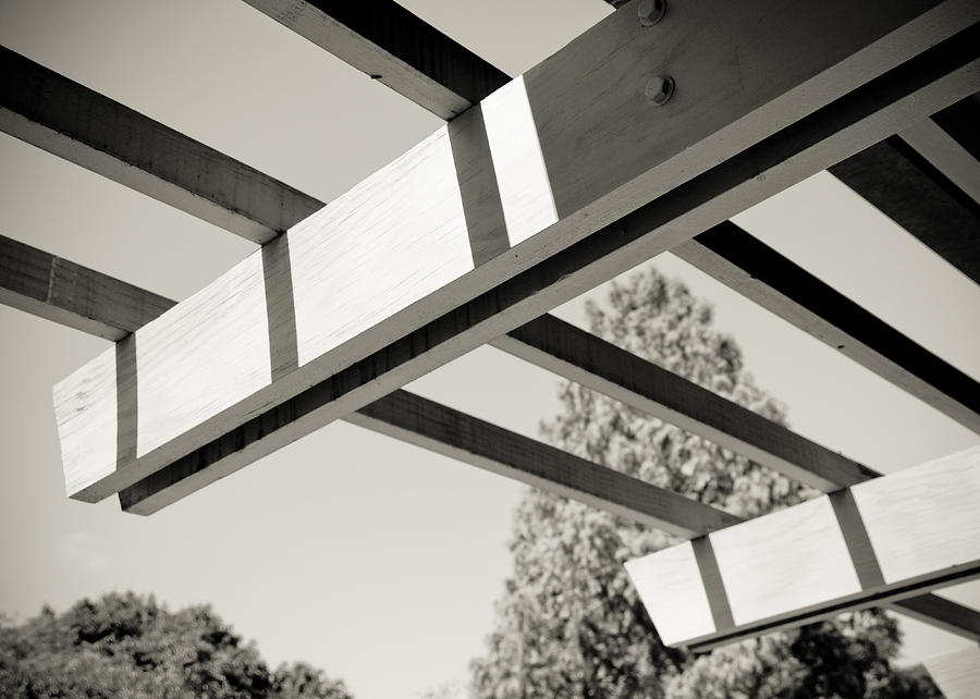 Lines Photograph - Roof Beams by Edward Myers