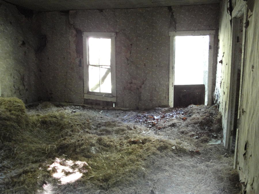 Abandoned House Photograph - Room With Hay by Terry  Wiley