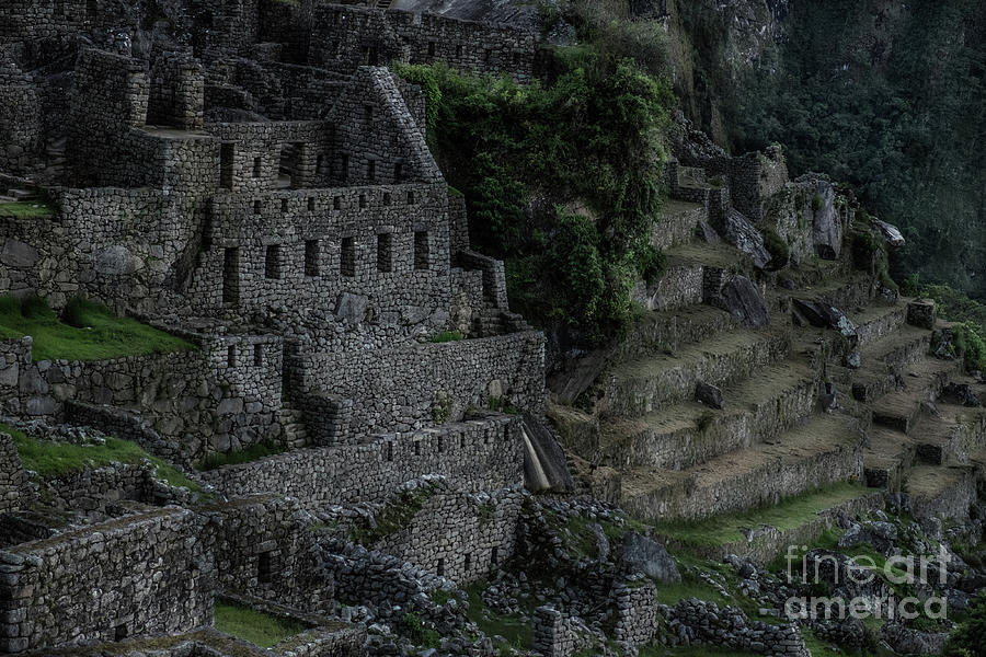 Rooms to Let Inca Style by William Fields