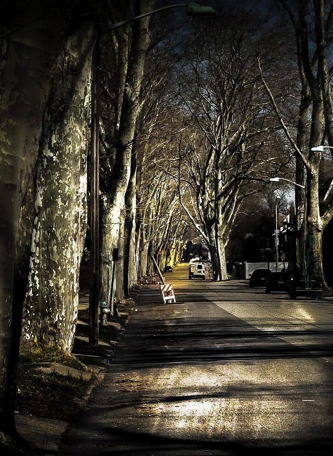 Roosevelt Avenue II by Leon De Vose