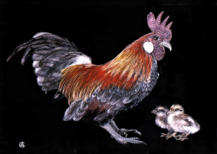 Rooster and chicks by Angie Cockle