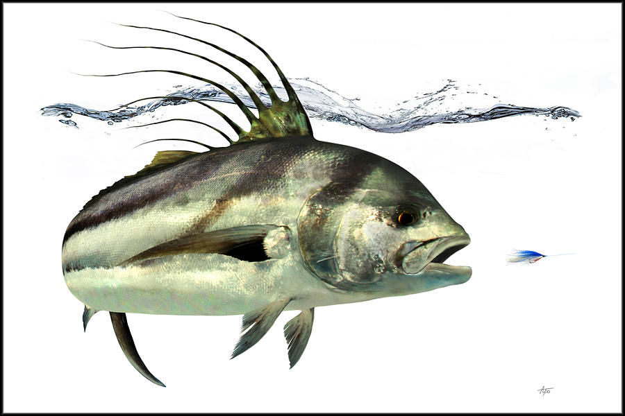 Rooster fish digital art by anders ovesen for Rooster fish pictures