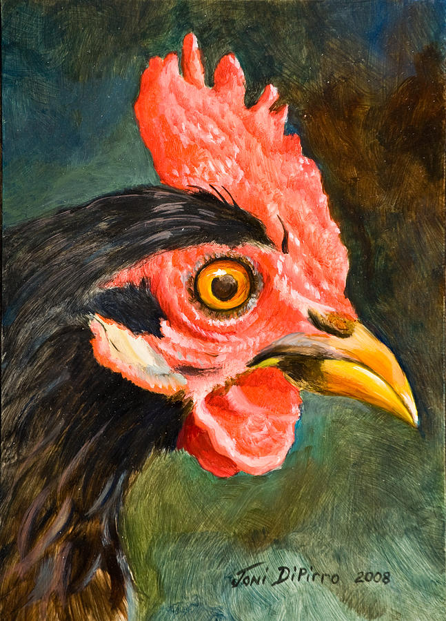 Rooster Painting - Rooster by Joni Dipirro