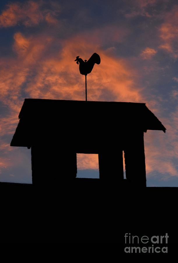 Rooster Photograph - Rooster Weather Vane Silhouette by Henry Kowalski