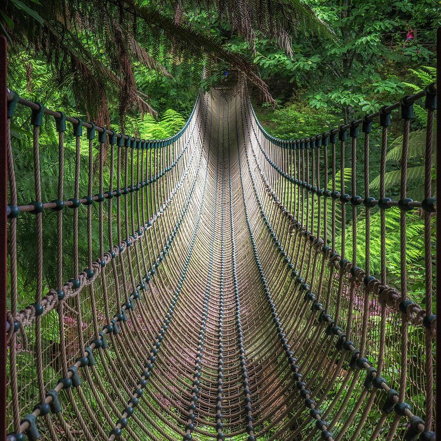 Bridge Photograph - Rope Bridge by Jae Mishra