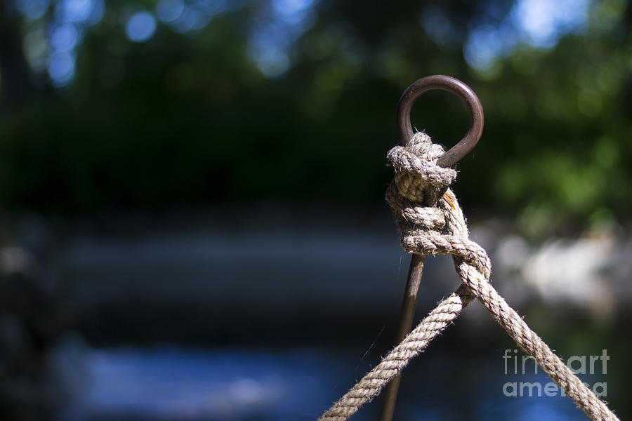 Rope Photograph - Rope Knot by Stefano Piccini