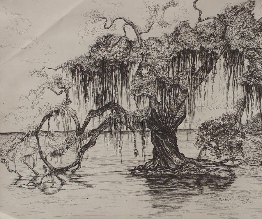 Louisiana Drawing - Rope Swing by Sarah Lonthier