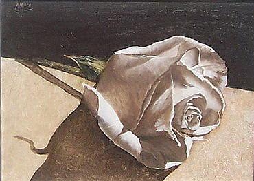 Rose 1 Painting by Natalia Tejera