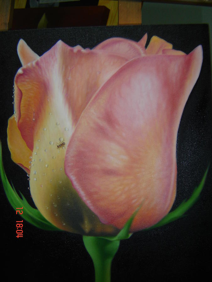 Rose Painting - Rose 3 by Luis  Jesus